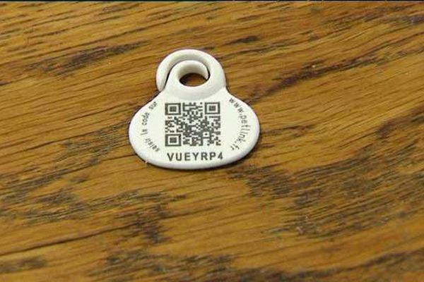 La médaille Véthica est marquée d'un QR Code unique, qui correspond au numéro d'identification de l'animal.