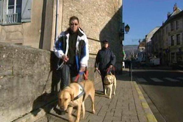 Un nouveau chien d'aveugle dans le Jura à Arbois