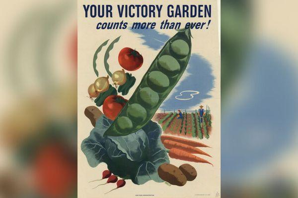 Les jardins de la victoire...sur le coronavirus?
