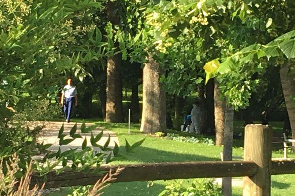 Le bois des Soeurs de Mourmelon-le-Grand (Marne) est investi par les gendarmes.