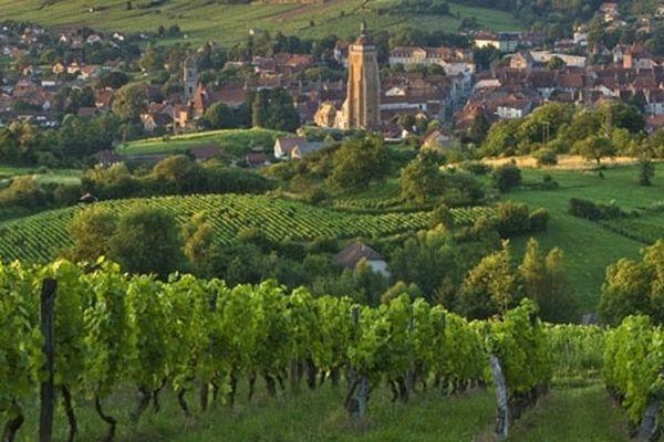 """Les saveurs du Jura, et notamment le vin de paille, sont à découvrir ce soir à partir de 20h45 dans """"Des Racines et des Ailes"""""""