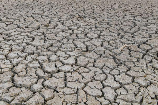 Le débit de nombreux cours d'eau de Haute-Loire a considérablement diminué suite aux températures caniculaires des mois de juillet et d'août, après l'été le plus chaud jamais connu depuis 2003.