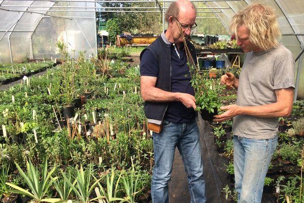 Ce producteur de Saint-Hilaire les Places (à droite) participe traditionnellement à la journée des plantes de Nexon.