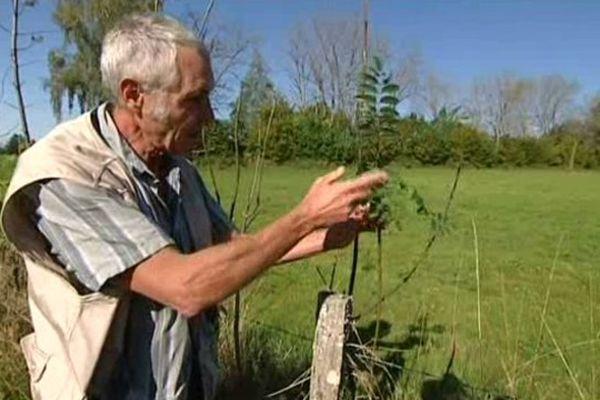 Luc Denis, technicien des forêts au Centre régional de la propriété forestière (CRPF).