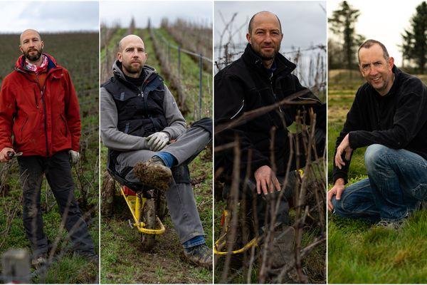 Quatre agriculteurs dans le Sézannais ont entrepris leur conversion à l'agriculture biologique en 2020.