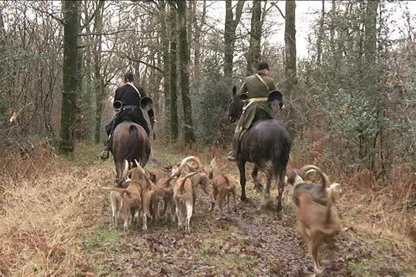 La chasse à courre, une tradition très ritualisée