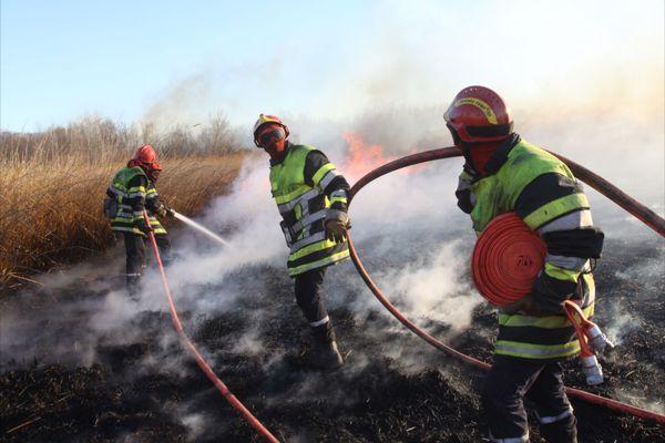 Les pompiers du département interviennent sur la N572 pour cinq départs de feu simultanés.