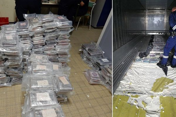 Les 415 pains de cocaïne étaient cachés dans le double-fonds d'un conteneur de bananes.