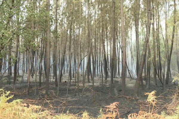 Le feu est désormais fixé après une nuit de combat des flammes
