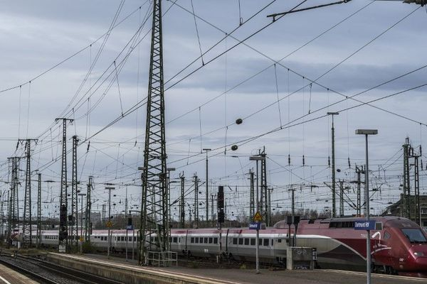 Le réseau ferroviaire emprunté par les TGV Thalys souffre de la chaleur.