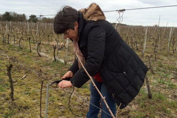 Isabelle Bureau de retour dans ses vignes après sa médaille d'argent au Salon de l'Agriculture