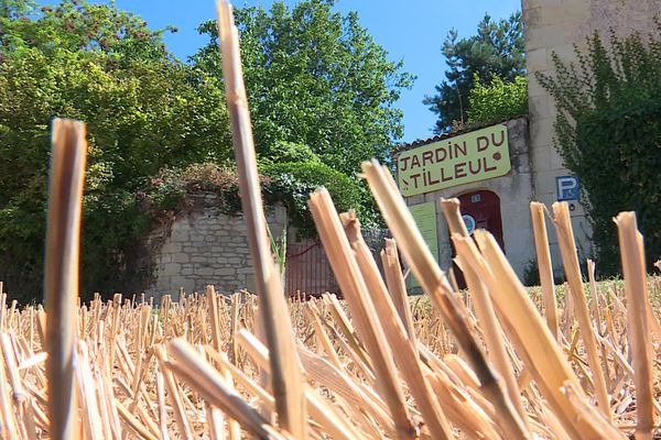 le musée du jardinage à Ternay (86)