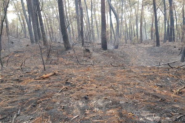 De nombreuses fumerolles persistaient deux jours après l'incendie. Les pompiers ont du surveiller la zone tout le week-end pour éviter un nouveau départ de feu.