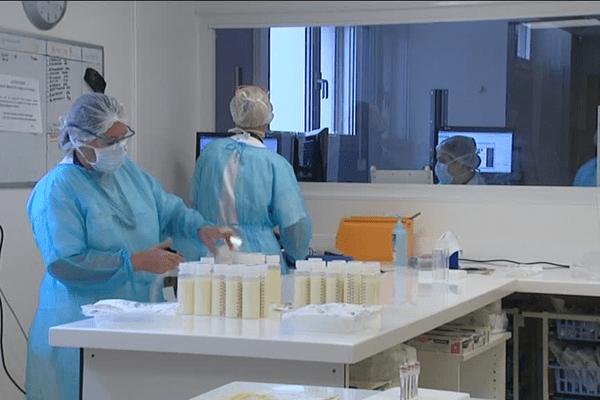 Deux prélèvements sont effectués sur chaque lot de lait.