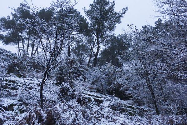 Est tombée la neige à la Chapelle-Bouëxic en Ille-et-Vilaine