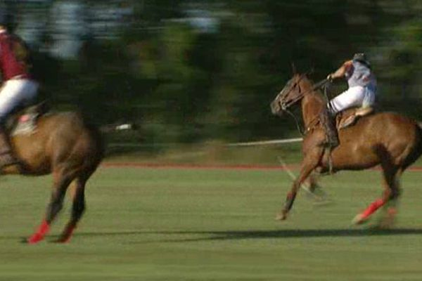 Le Polo un sport venu d'Inde et désormais pratiqué à Mauguio prés de Montpellier