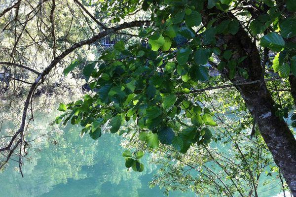 Le Samu de l'environnement veut améliorer la santé publique en améliorant la santé de notre environnement