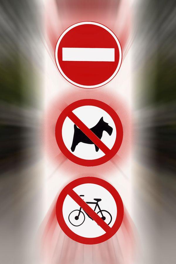 Les chiens sont interdits dans les trams et bus de Normandie.
