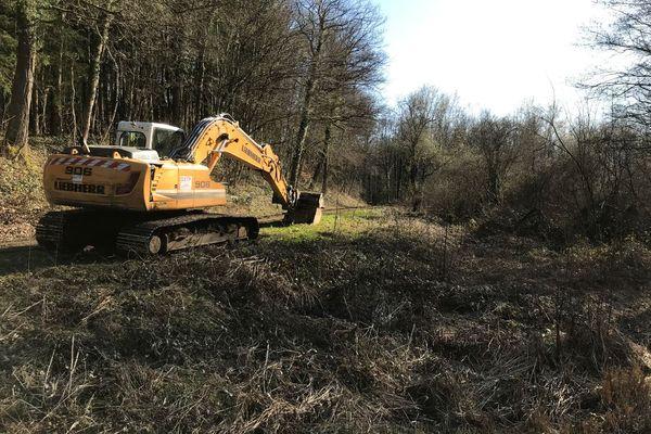 Les fouilles ont débuté lundi 29 mars au Marais de Paradis dans les Ardennes