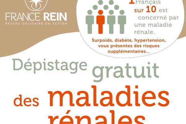 La semaine nationale du rein veut attirer l'attention sur le dépistage de maladies rénales