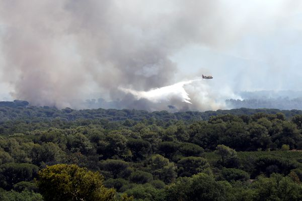 Un canadair en action dans le massif des Maures, dans le département du Var, où des incendies font rage, le 17 août 2021.
