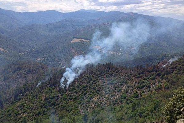 Saint-André-de-Valborgne (Gard) - l'incendie a détruit 110 hectares de forêt en Cévennes - 31 juillet 2015.