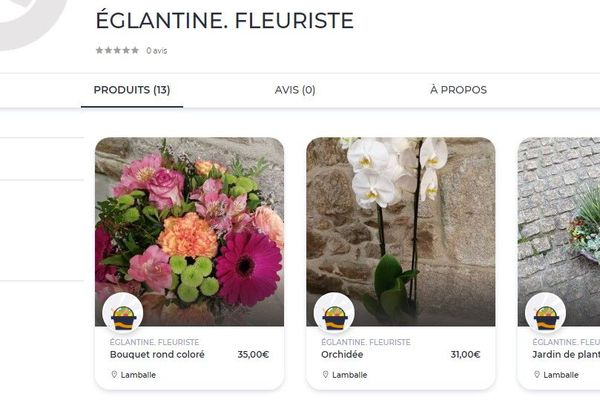 """Sur le site """"Ma ville-mon shopping"""" de Lamballe, les fleurs d'Eglantine."""