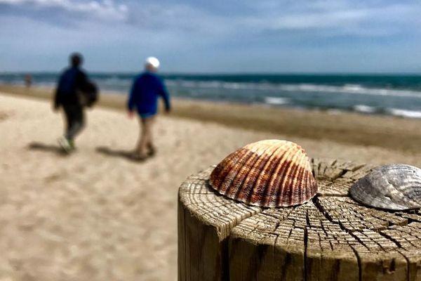 La plage de Carnon, commune de Mauguio dans l'Hérault - 7/05/2019