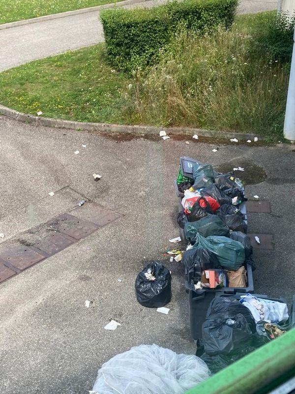 Les poubelles s'amoncellent sur le terrain occupé