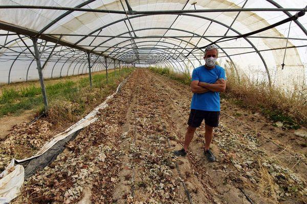 Terres sous serres saccagées début juillet au jardin de paradis.