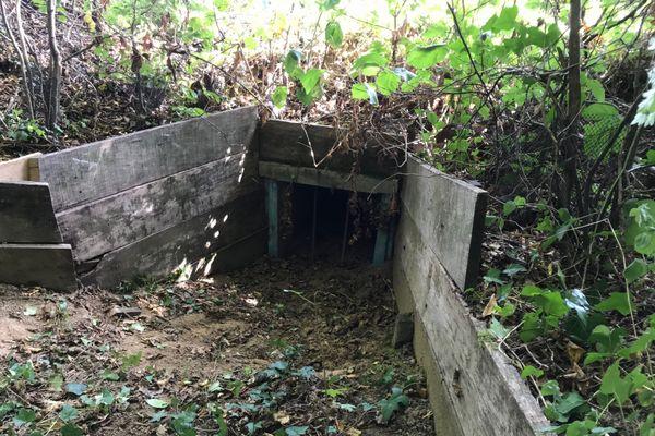 L'entrée du tunnel pour les amphibiens qui relie le Bois Magneux à l'étang