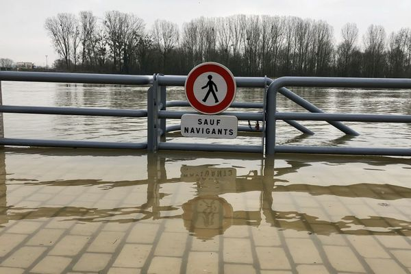 La crue de la Saône à Mâcon