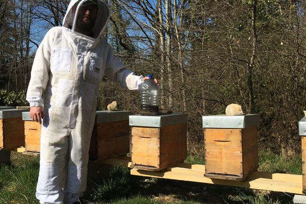 Les apiculteurs mobilisés pour lutter contre l'invasion du frelon asiatique.