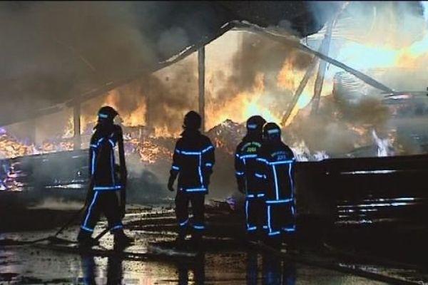 La scierie Grandpierre ravagée par le feu à Chatel-de-Joux, dans le Jura