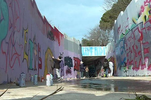 Les murs du ruisseau du Verdanson à Montpellier ont pris des couleurs - Mars 2016