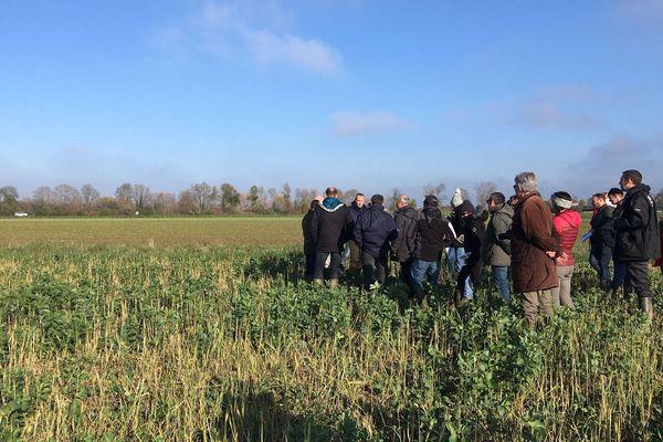 Expérimentations agroécologiques de la plateforme CA-SYS de l'INRA de Dijon