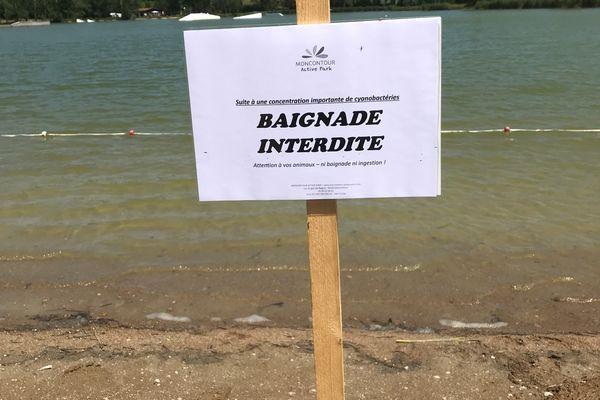Un taux de cyanobactéries supérieur au taux autorisé a été détecté dans l'eau du lac de Moncontour (Vienne).