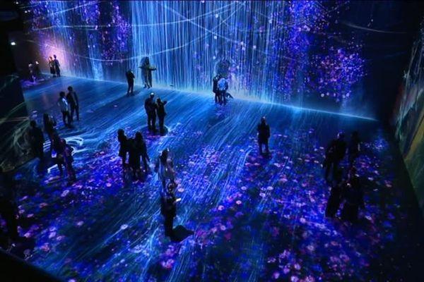 """L'exposition """"Au-delà des limites"""" projette des images à 360° qui évoluent en fonction des mouvements des visiteurs."""