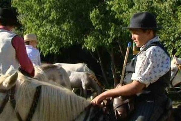Gardians et chevaux de race Camargue dans le Gard.