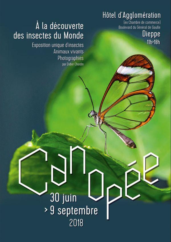 """L'affiche de l'exposition """"Canopée : à la découverte des insectes du monde"""", du 30 juin au 9 septembre à Dieppe."""