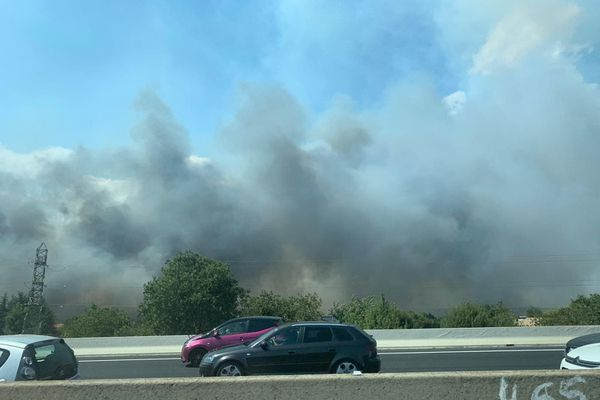 Un incendie s'est déclaré à proximité de l'autoroute A9 ce samedi 1er août.