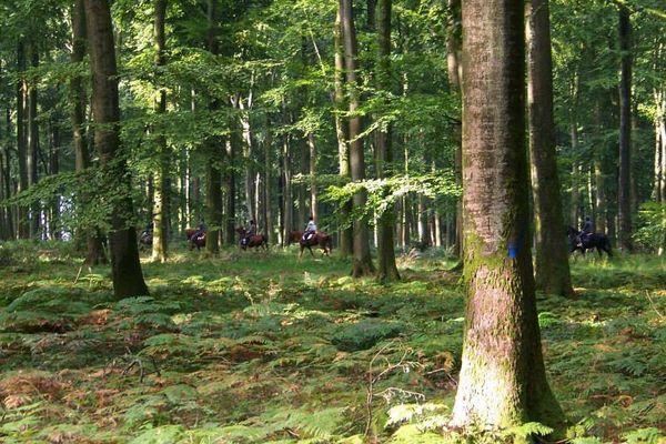 La randonnée, une autre façon de découvrir une région.
