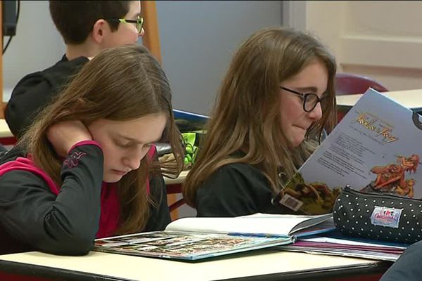 Les élèves sont libres de choisir le livre qu'ils souhaitent.
