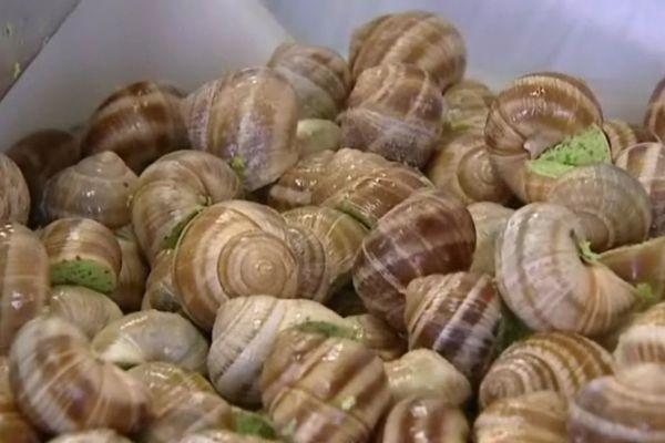 La recette des escargots de Bourgogne est originaire de Bassou dans l'Yonne