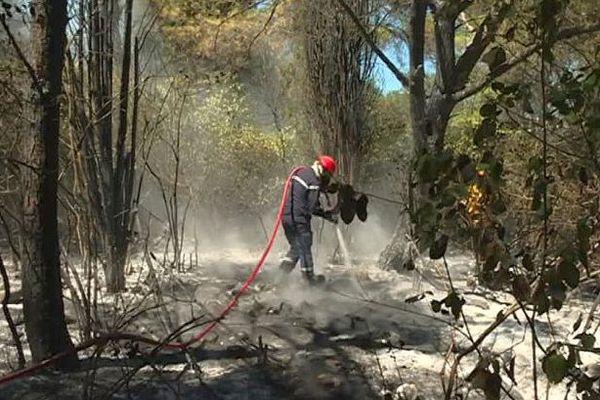Milhaud (Gard) - une dizaine d'hectares brûlés par un incendie - 12 août 2016.