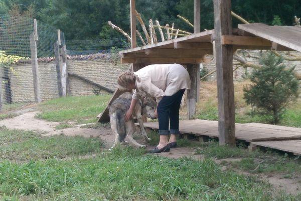 Béatrice Gérardot avec l'un des deux loups accueillis dans son refuge