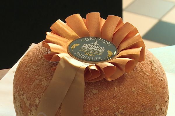 Médaille d'or pour la mimolette 24 mois d'affinage de la fromagerie Sainte-Godeleine de Wierre-Effroy.