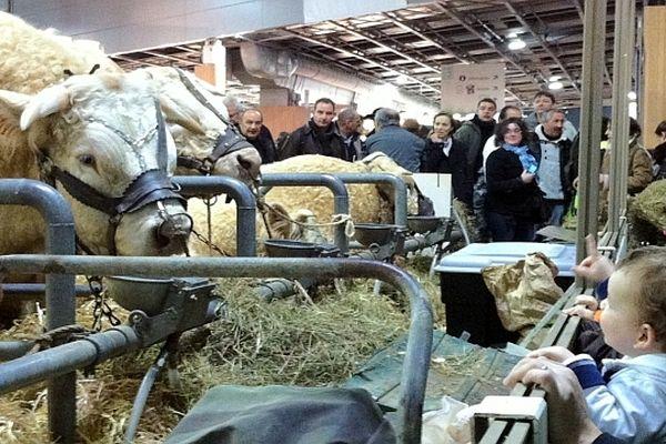 La plus grande ferme de France ouvre ses portes du samedi 23 février au dimanche 3 mars 2013 à Paris.