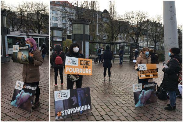 Une dizaine de militantes pour la cause animale s'était rassemblée devant les Halles pour diffuser les cris de souffrance des lapins angora.