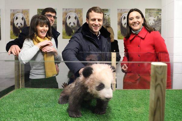 Le Président de la République Emmanuel Macron est venu fêter ses 40 ans au ZooParc de Beauval, en famille, lors d'une visite privée ce samedi 16 décembre